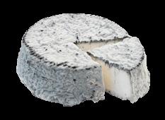Export Fromage - Fromage de Chèvre - Selles sur Cher