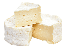 Cheese Export - Camembert