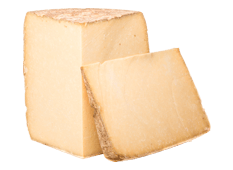 Cheese Export - Cantal