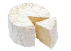Cheese Export - Chaource