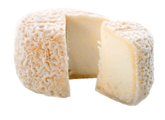 Cheese Export - Crottin de Chavignol
