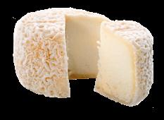 Export Fromage - Fromage de Chèvre - Crottin de Chavignol