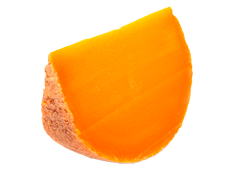 Cheese Export - Mimolette