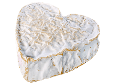 Cheese Export - Neufchâtel