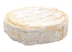 Cheese Export - Saint Félicien