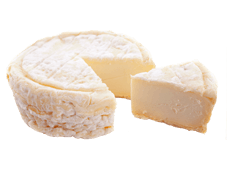 Cheese Export - Saint Marcellin